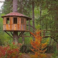casa-albero