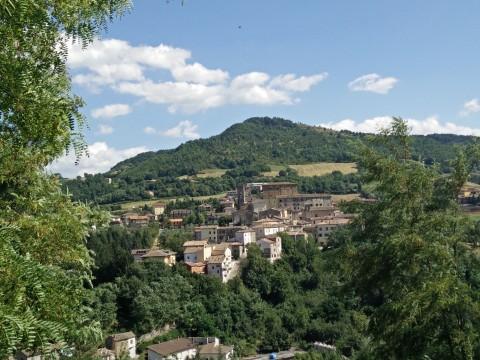 Campo lupi PS1 Monte Cerignone